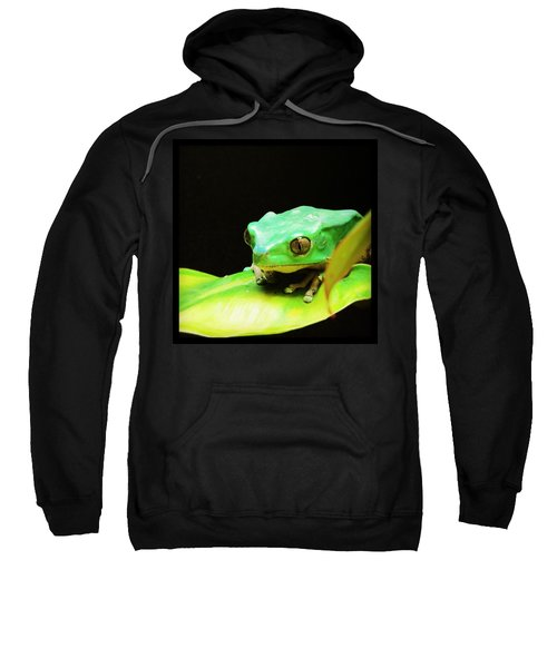 Feeling Froggy Sweatshirt