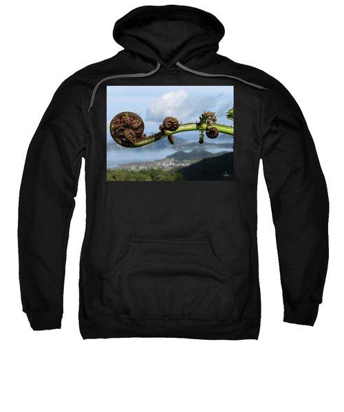 Fern Fiddlehead Sweatshirt