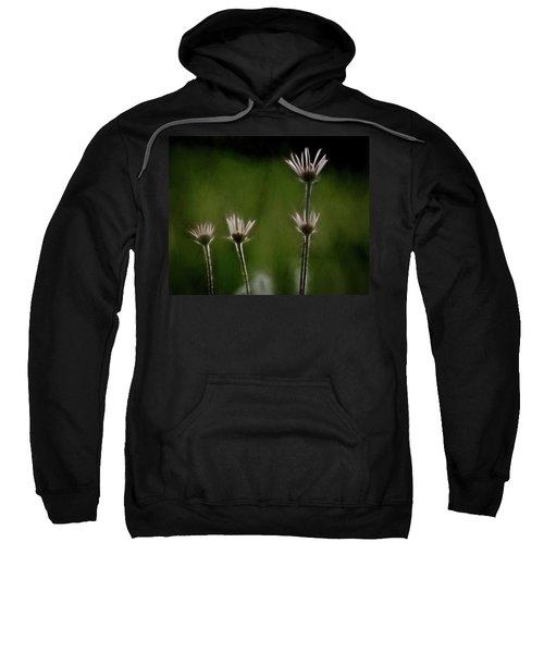 Field Of Flowers 4 Sweatshirt