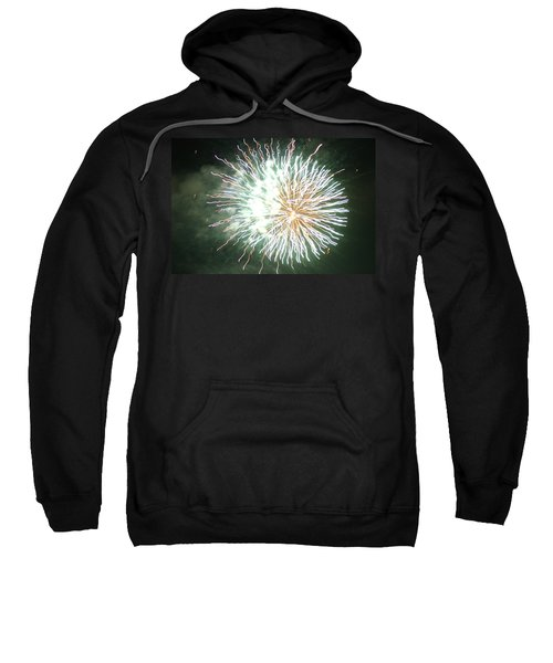 Fireworks In The Park 4 Sweatshirt