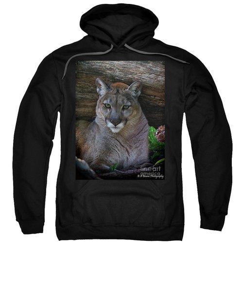 Florida Panther Sweatshirt