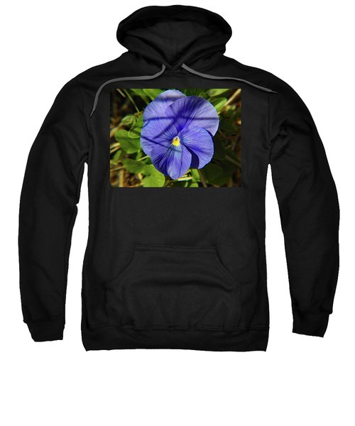 Flowering Pansy Sweatshirt