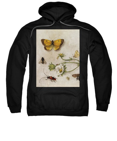 Flowers, Insects And Butterflies Sweatshirt