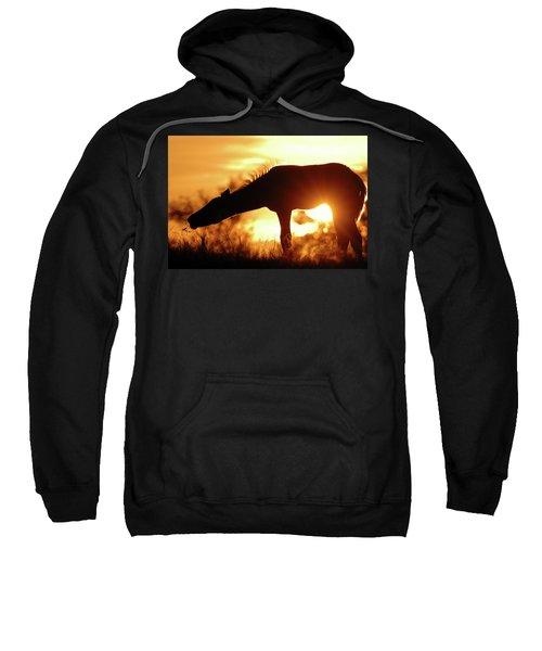 Foal Silhouette Sweatshirt
