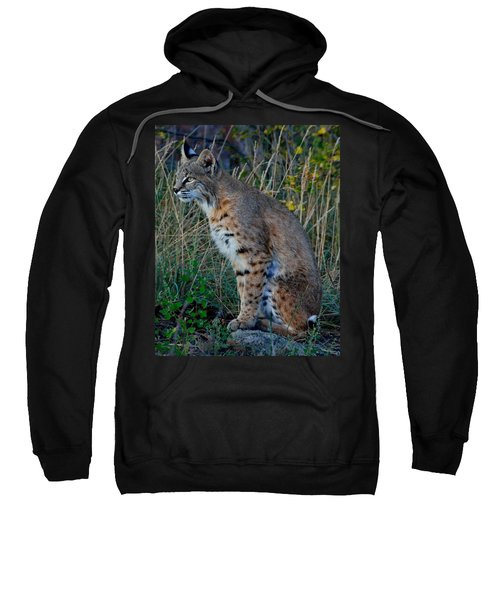 Focused On The Hunt 2 Sweatshirt