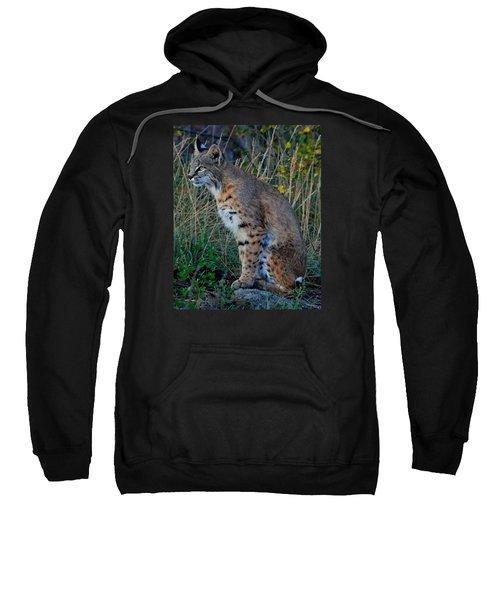 Focused On The Hunt 2 Sweatshirt