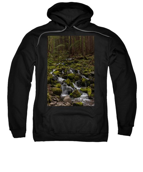 Forest Cathederal Sweatshirt