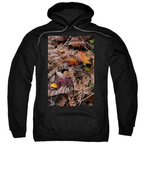 Forest Ferns Sweatshirt