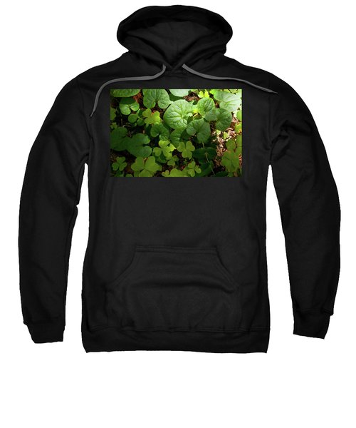 Forest Floor Sweatshirt