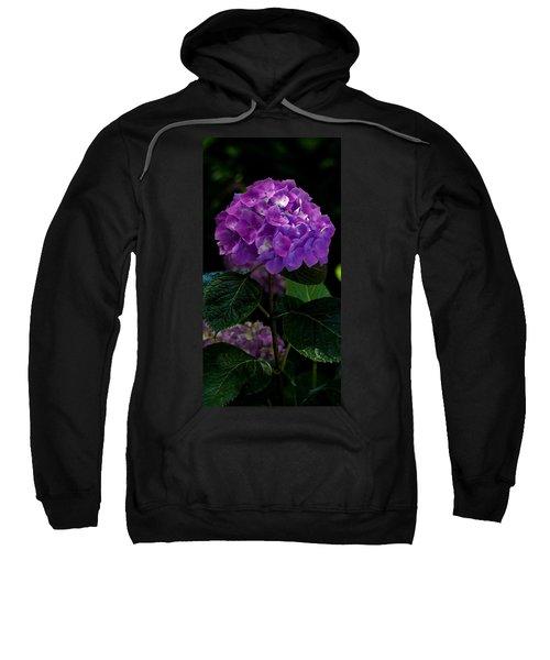 Forever Violet Sweatshirt