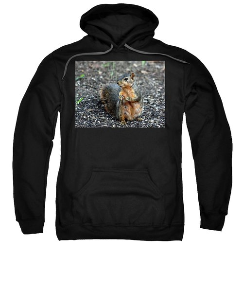 Fox Squirrel Breakfast Sweatshirt