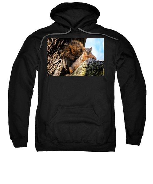 Fox Squirrel Watching Me Sweatshirt
