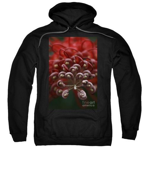 Sweatshirt featuring the photograph Friendly Foe by Stephen Mitchell
