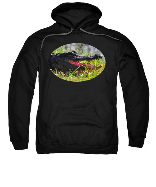 Gator Grin .png Sweatshirt by Al Powell Photography USA