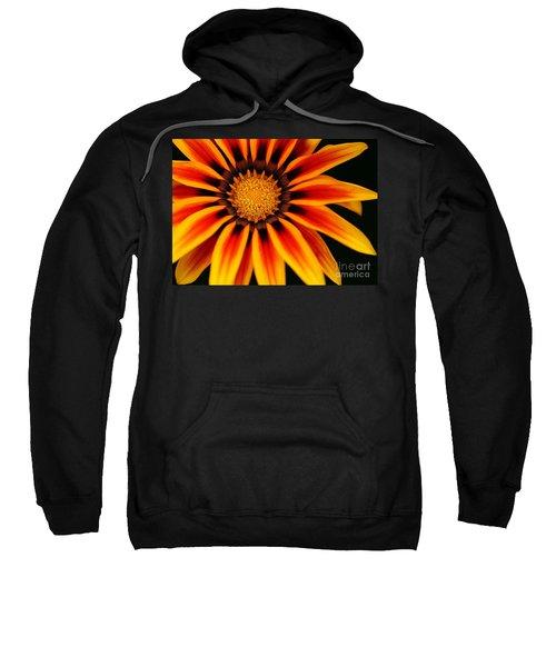 Gazania L Sweatshirt