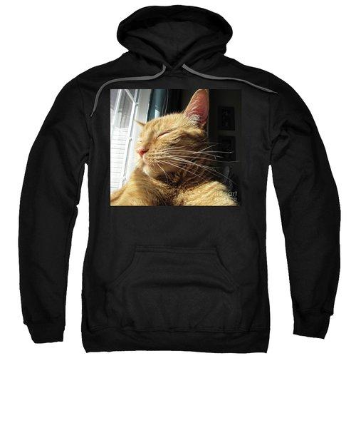 Ginger Tabby Sweatshirt