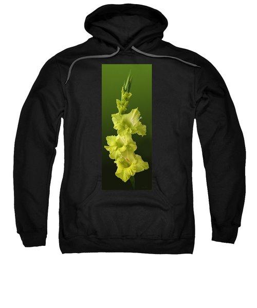 Glads Sweatshirt