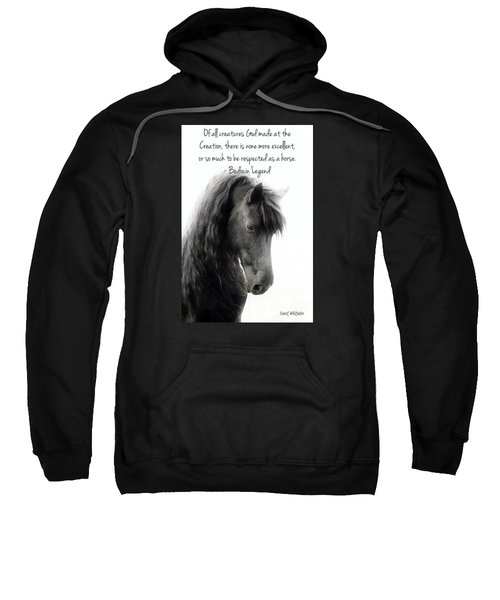 God's Creation Sweatshirt