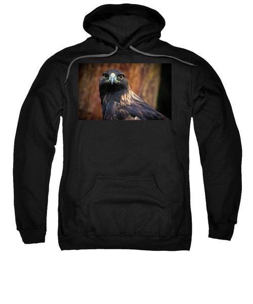 Golden Eagle 1 Sweatshirt