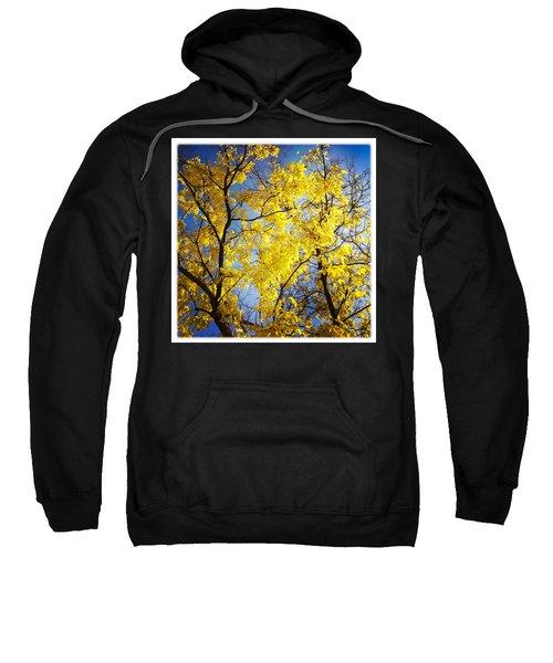 Golden October Tree In Fall Sweatshirt