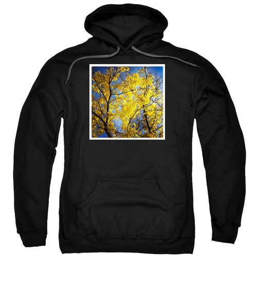 Golden October Tree In Fall Sweatshirt