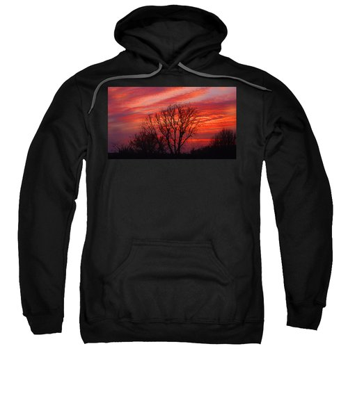 Golden Pink Sunset With Trees Sweatshirt
