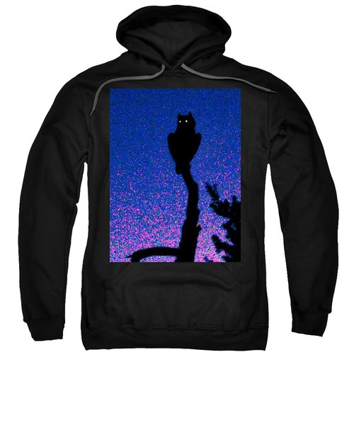Great Horned Owl In The Desert Sweatshirt