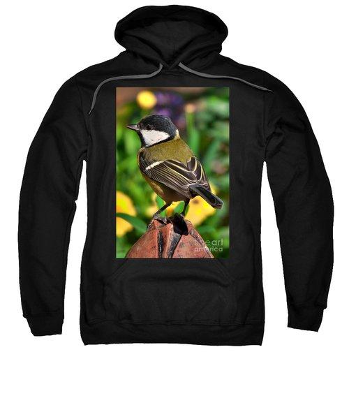 Great Tit British Bird Parus Major Sweatshirt