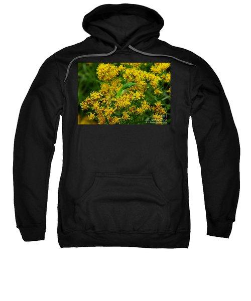 Green Anole Hiding In Golden Rod Sweatshirt