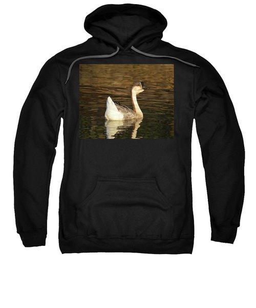 Handsome Domesticated Swan Goose Sweatshirt
