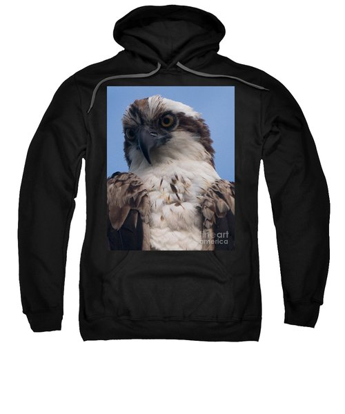 Hawk Profile Sweatshirt
