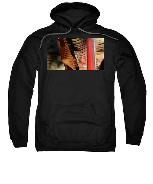 Heliconia Lines Sweatshirt