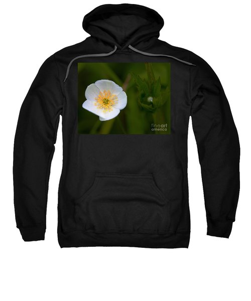 Hidden Tears Sweatshirt