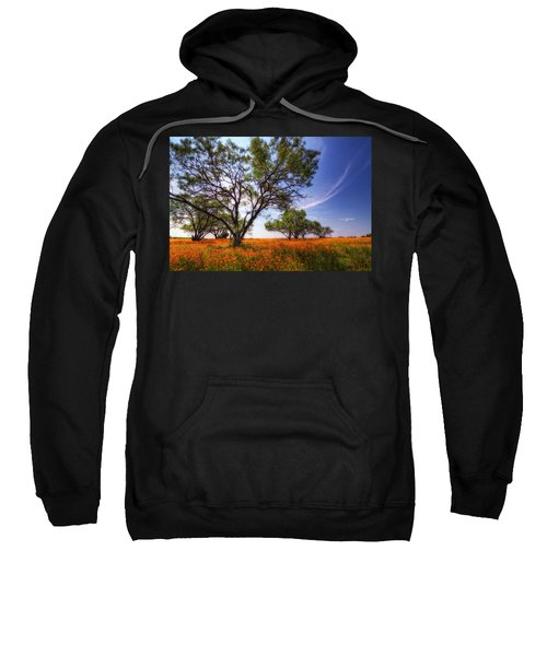 Hill Country Spring Sweatshirt