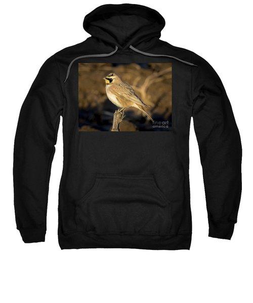 Horned Lark Sweatshirt