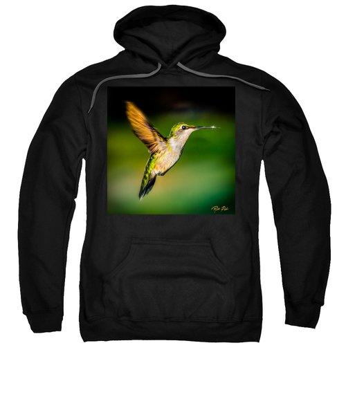 Hummingbird Sparkle Sweatshirt