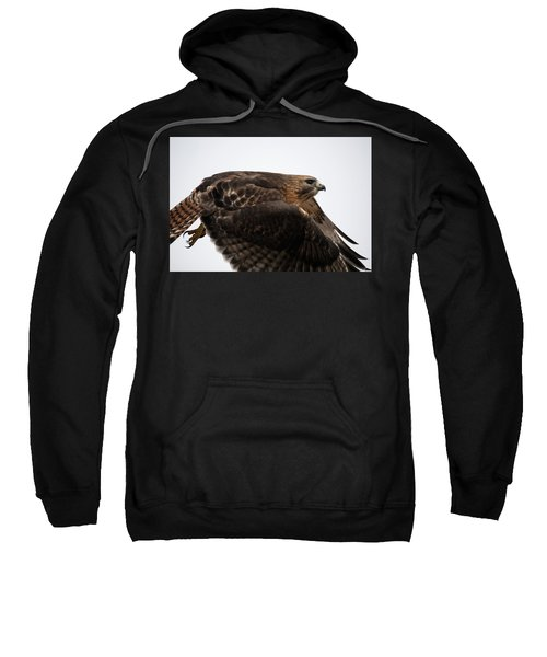 Hybrid Hawk Flyby  Sweatshirt