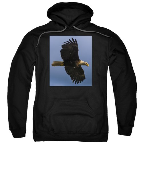 In Flight Sweatshirt by Gary Lengyel