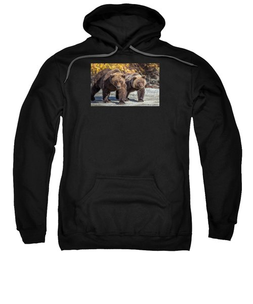 In Stride  Sweatshirt