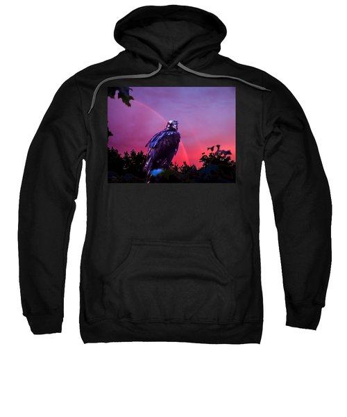 In The Eye Of A Hawk Sweatshirt