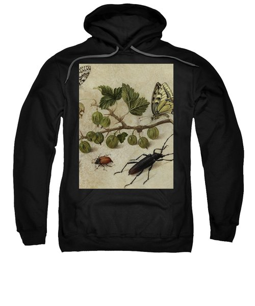 Insects And Butterfly Sweatshirt