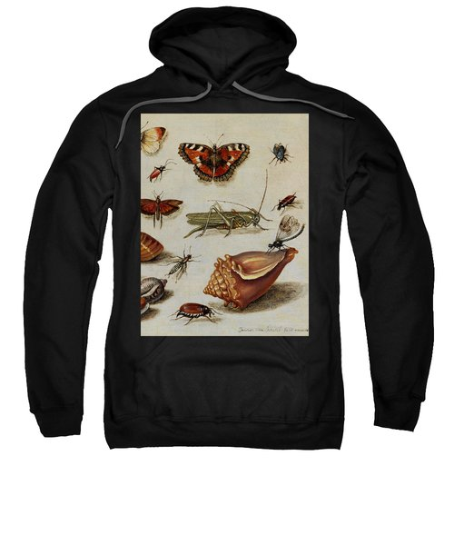 Insects, Shells And Butterflies Sweatshirt