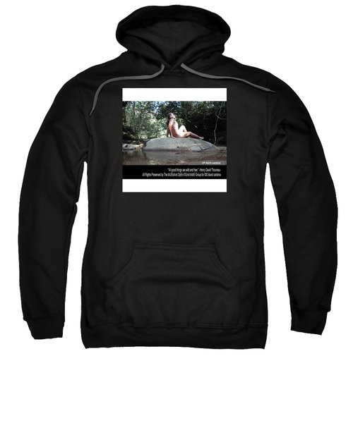 Into The Wild Sweatshirt