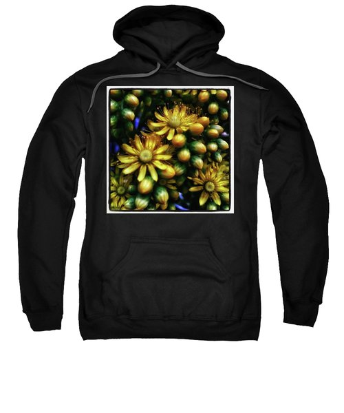 Sweatshirt featuring the photograph Irish Rose. Also Known As Pinwheel by Mr Photojimsf
