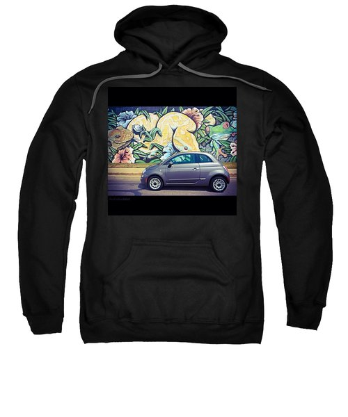 Is It Safe To Drive Mr. #fiat Into The Sweatshirt
