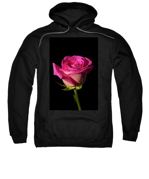 January Rose Sweatshirt