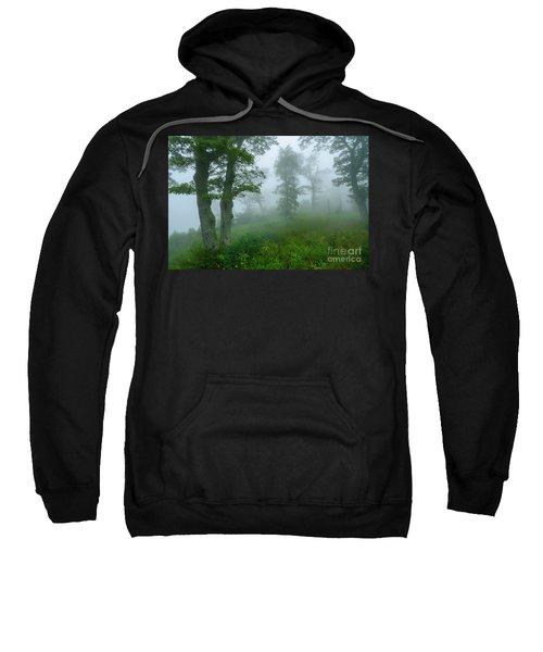 Jewell Hollow Overlook Sweatshirt