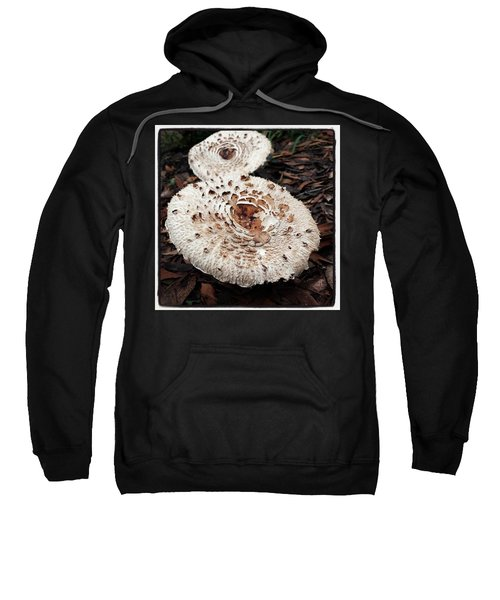 Sweatshirt featuring the photograph Joy Walking In The Woods by Mr Photojimsf