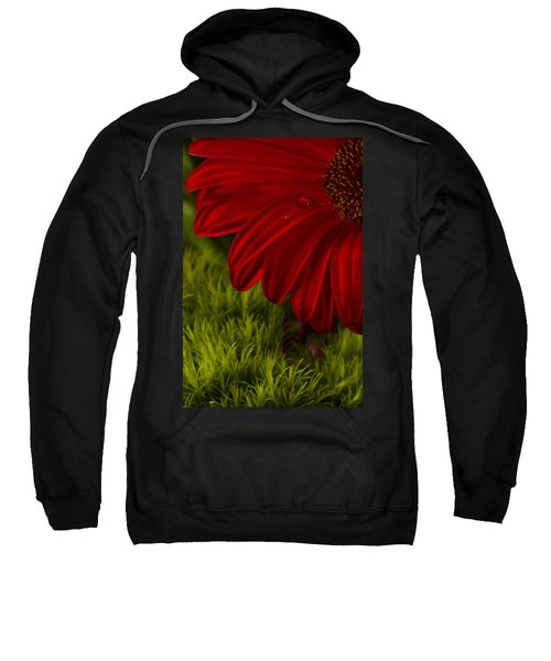 Just A Drop Sweatshirt