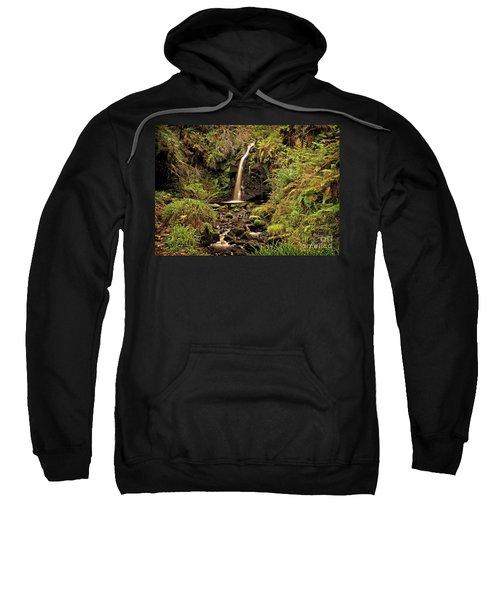 Kielder Forest Waterfall Sweatshirt